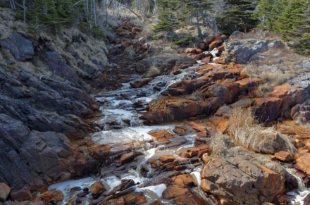 The TOP 5 most common water pollution sources you should know about